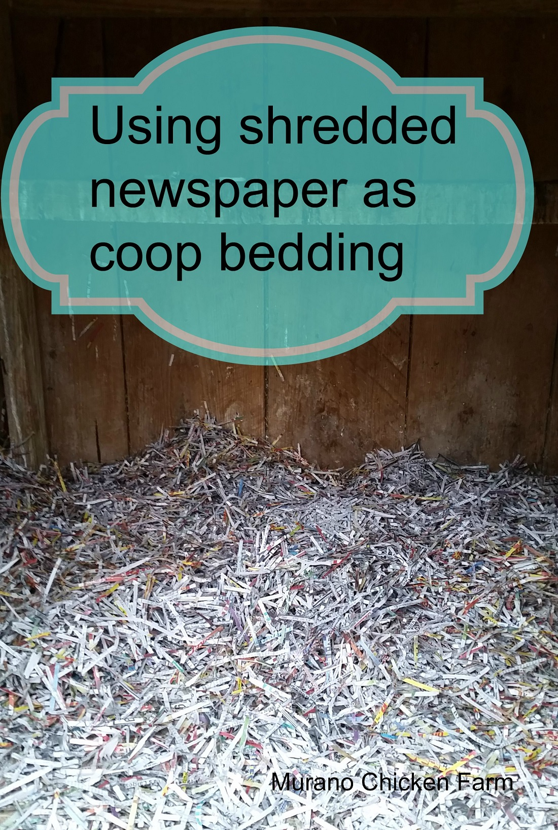 Using Shredded Paper Chicken Bedding
