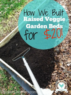 how to build raised vegetable garden beds for 20 - How To Build A Raised Vegetable Garden