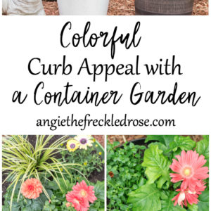 Add Colorful Curb Appeal with a Container Garden