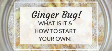 What is Ginger Bug & how you can make your own!