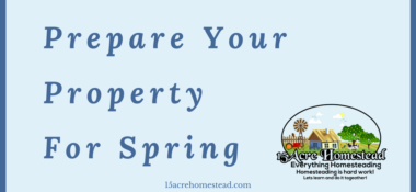 Prepare Your Property For Spring